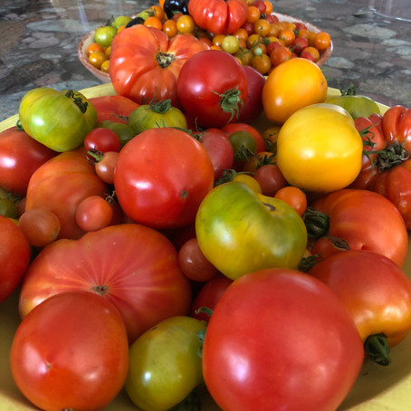 About Tomatoes - Il Pomo D'Oro
