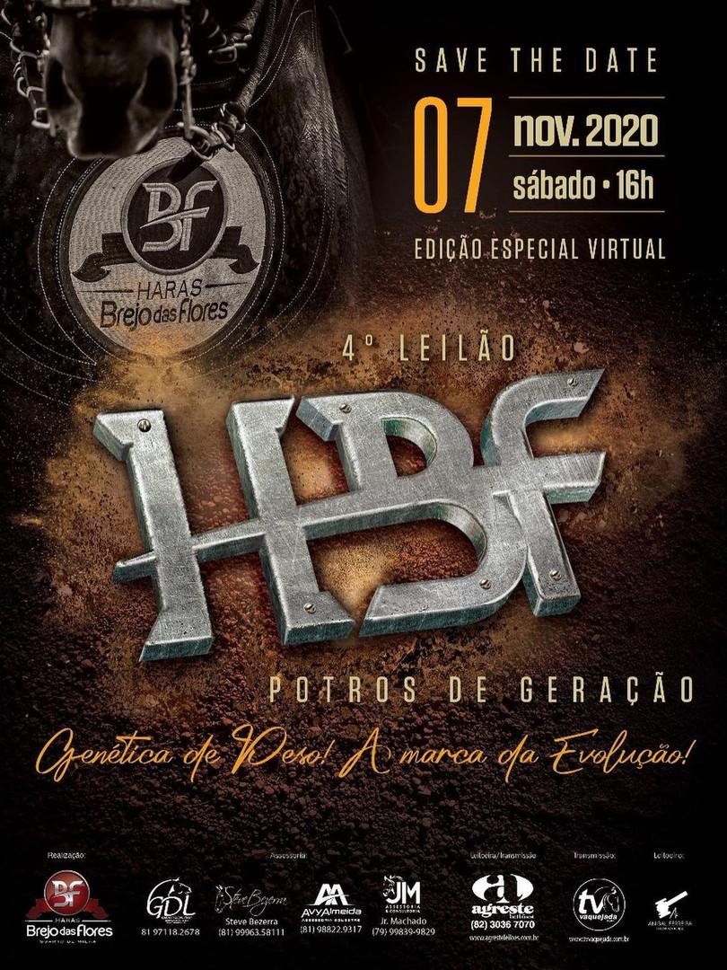 Leilão HBF Potros