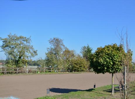 Dressurplatz