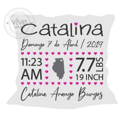 Personalized Birth Announcement Pillow/ Cojin personalizado de Nacimiento