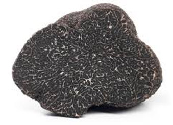 Tuber Melanosporum o nero pregiato 100 gr