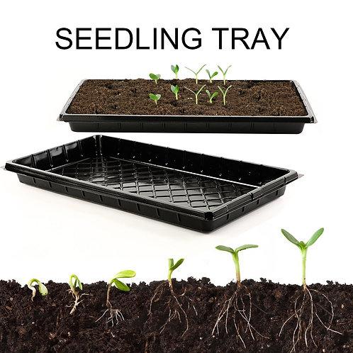 Microgreen Tray 5 pack (No holes)