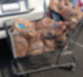 P_Plastic_Bags.jpg