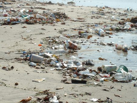 pollution_beach-03-450x338