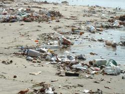 pollution_beach-03-450x338