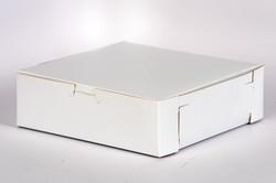 RETHINKING PLASTIC Product 10-15-19-413.