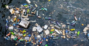 Scientists identify two more potential 'garbage patch' zones in world's oceans