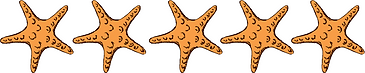 Five Starfish.png
