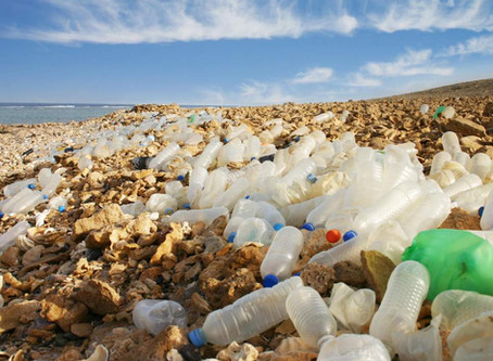 Coca-Cola and Nestle among worst plastic polluters based on global clean-ups