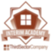 BADGE Interim Academy.jpg