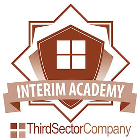 BADGE Interim Academy.jpg