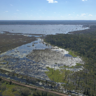 SOLD - 324 Acres - Lake Mary - Woodville, MS