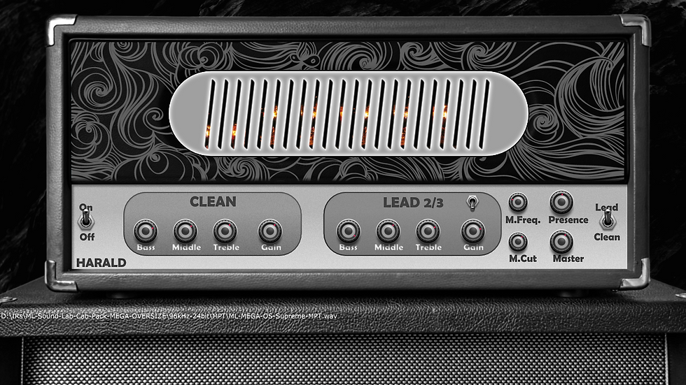 Harald Virtual Amp