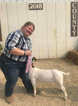 res champ mkt doe  Goodhue co 4-H  Chels