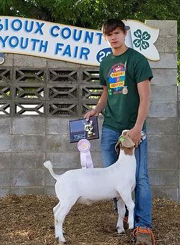 res champ Sioux county Fair  Dylan Harma