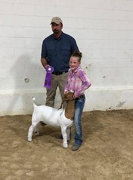 champ mkt goat  Mower Co Open Show  Aubr