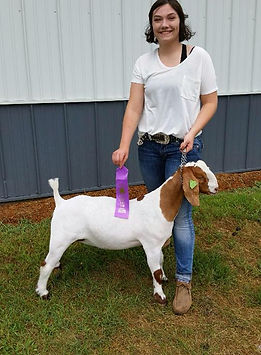 champ mkt doe  Steele Co 4-H  Tory Buck.