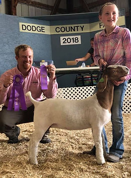 champ mkt doe   grand overall  dodge co.