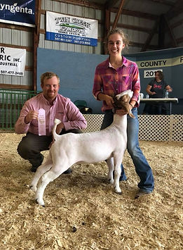 res champ mkt doe  Dodge County Open Sho
