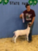 res champ mkt doe MN state 4-H  Simon So