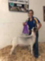 champ mkt goat Olmsted Co FFA  Jojo Welt