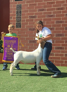champ mkt goat  Warren Co 4-H  Hanna Bed