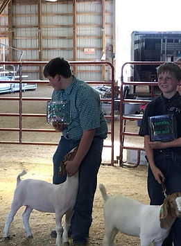 champ Northern show circuit WI.jpg