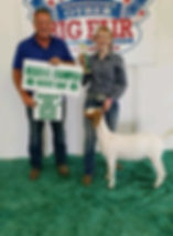 res champ mkt goat  Martin Co 4-H  Sarah