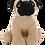 Thumbnail: Pugley The Pug