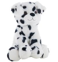 Dot the Dalmatian Dog