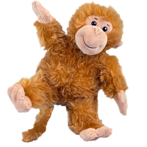 Cheeky the Monkey