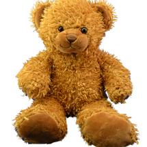 Caramel the Bear
