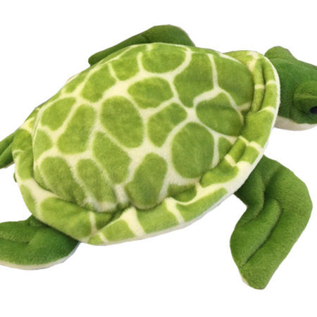 Shelldon the Sea Turtle