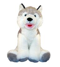 Snowshoe the Husky