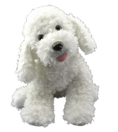 Scruffles the Dog