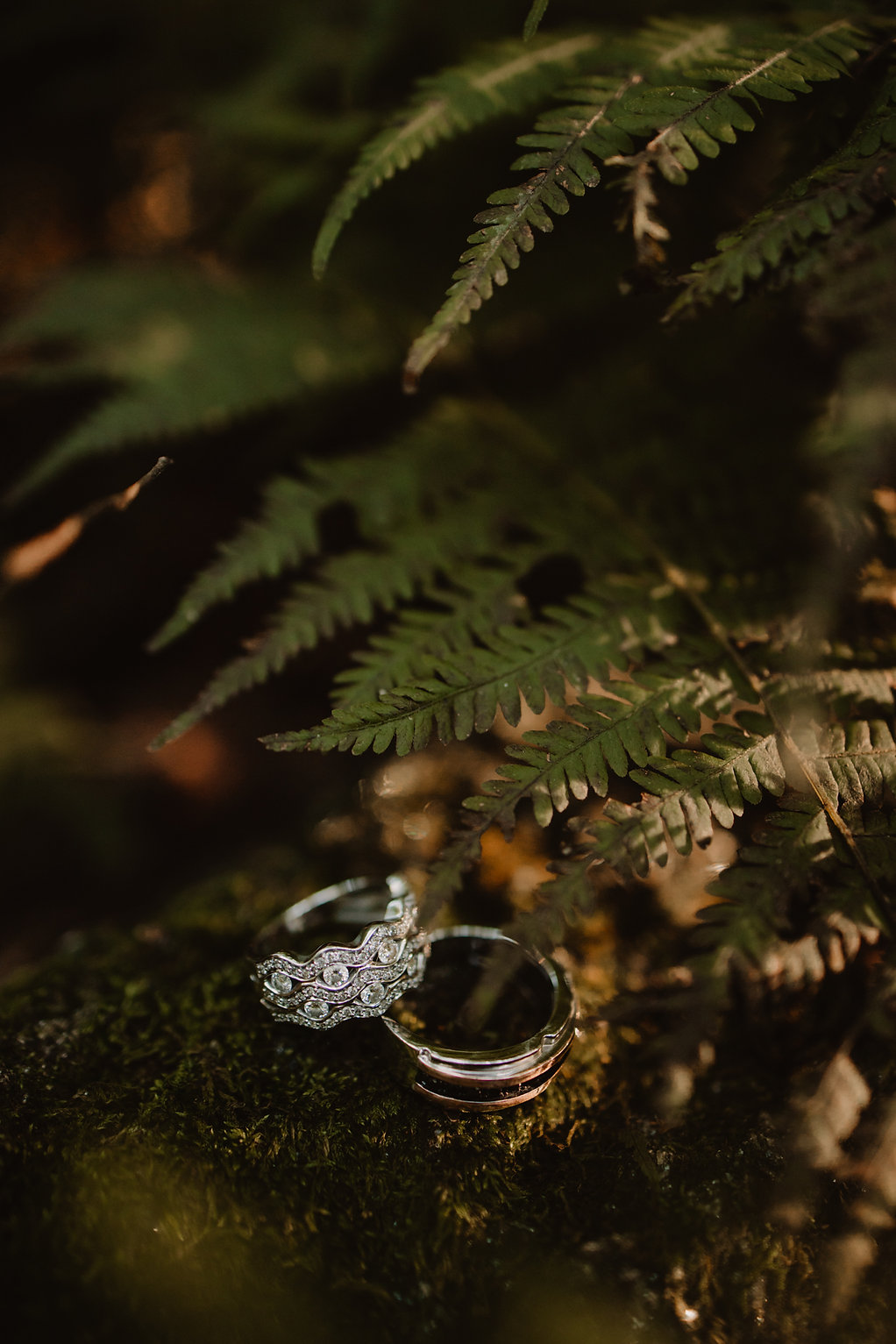 Maryland Elopement-20.jpg