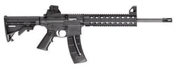 Smith & Wesson 15-22