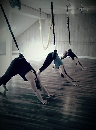 Yoga Lily Studio Bungee Fitness