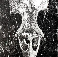 Memento Mori: Sparrow Skull.