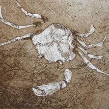 Memento Mori: Crab.