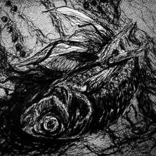Memento Mori: Fish.