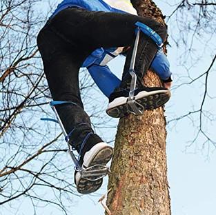 tree climber.jpg