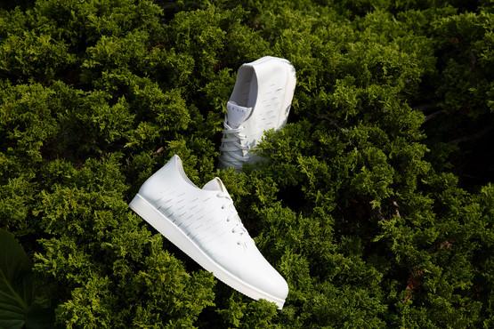 Velt Shoes & Accessoires