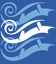PSO logo groot