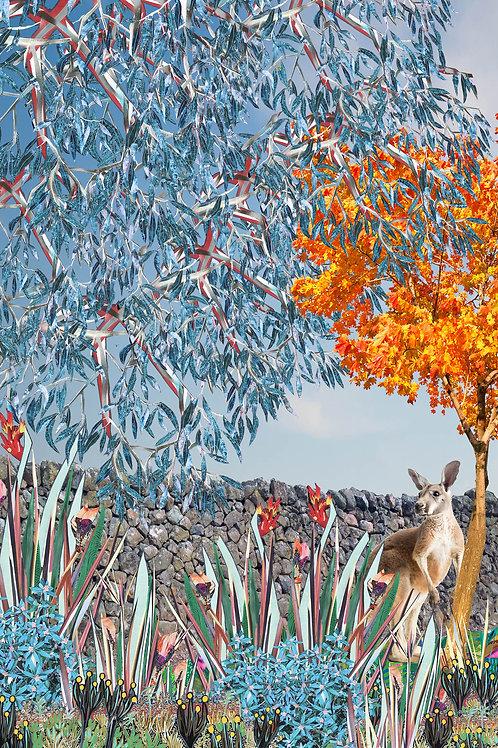 Australian Autumn