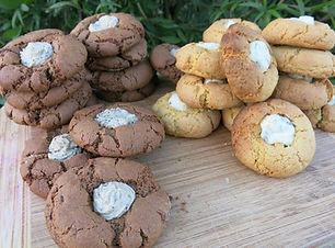 australian-bush-food-biscuit-recipe-wattleseed-lemon-myrtle