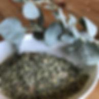 saltbush-australian-native-bush-food