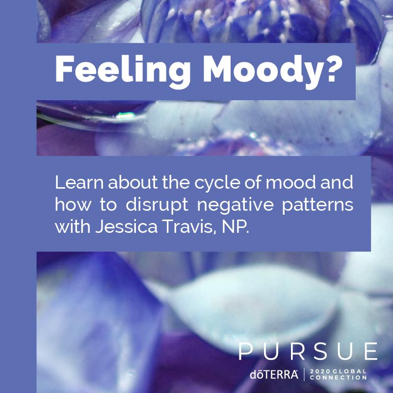 Mind & Mood Management