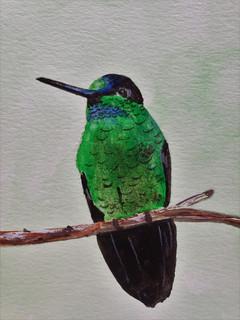 original hummingbird painting