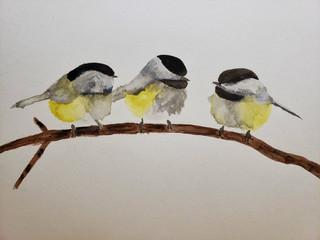 yellow chickadee birds art